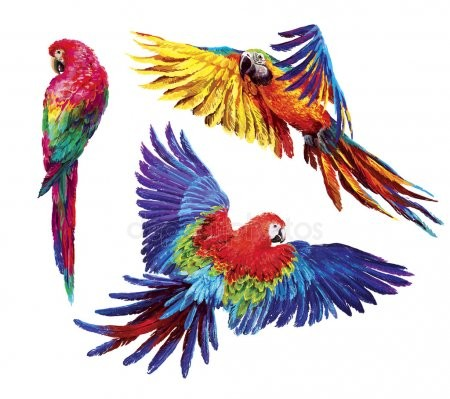 Корма  и лакомства для птиц и грызунов